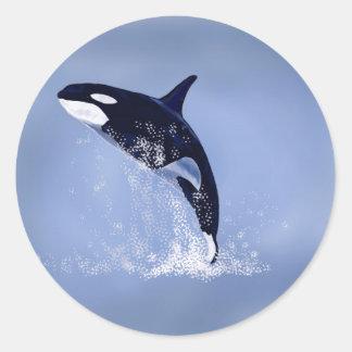 Killer Whale Classic Round Sticker