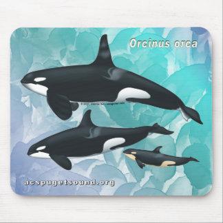 Killer Whale Family Mousepad Blue Watercolor bkg
