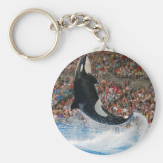 Killer whale jumping basic round button keychain