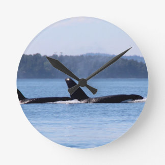 Killer Whale Mother and Son Wallclocks