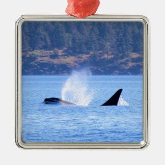 Killer Whale Silver-Colored Square Ornament