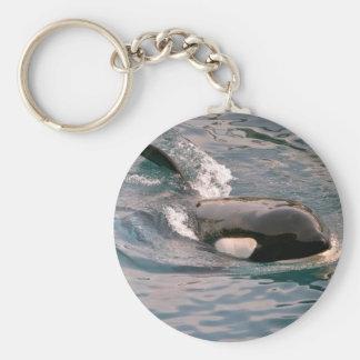 Killer whale swimming keychain