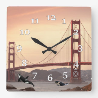 Killer Whales At The Golden Gate Square Wall Clock