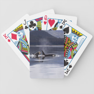 Killer Whales Bicycle Playing Cards