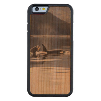 Killer Whales Carved Cherry iPhone 6 Bumper Case