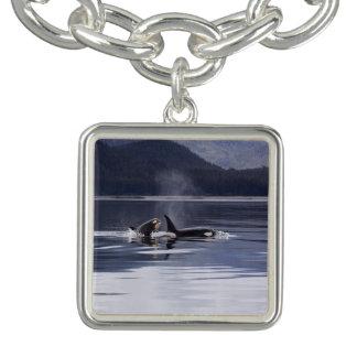 Killer Whales Charm Bracelets