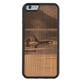Killer Whales Cherry iPhone 6 Bumper Case