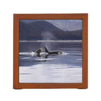 Killer Whales Desk Organizer