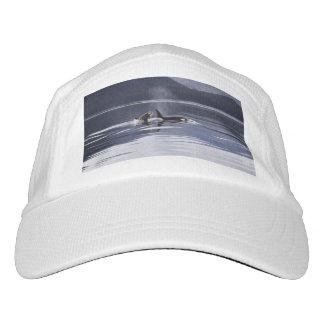 Killer Whales Hat