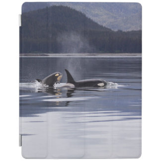 Killer Whales iPad Cover