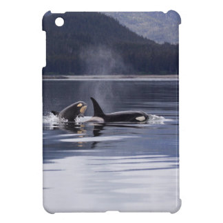 Killer Whales iPad Mini Covers