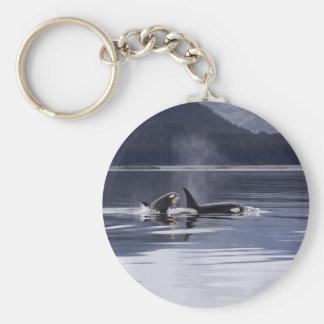 Killer Whales Keychain