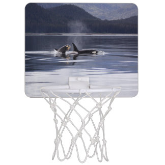 Killer Whales Mini Basketball Hoop