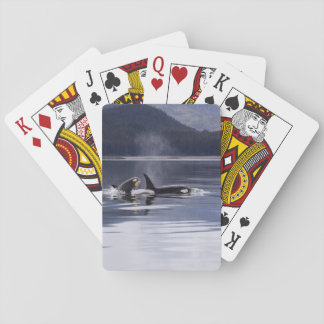 Killer Whales Playing Cards