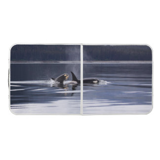 Killer Whales Pong Table