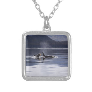 Killer Whales Silver Plated Necklace