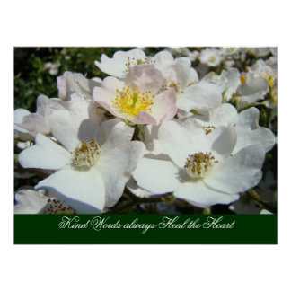 Kind Words always Heal the Heart art prints Roses Poster