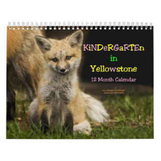 Kindergarten in Yellowstone Calendar