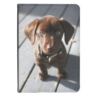 Kindle 4 and Kindle Touch Case With Puppy