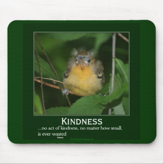 Kindness Baby Oriole Motivational Mousepad