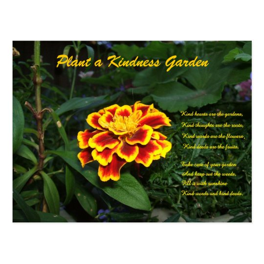 Kindness Garden Poem Postcard