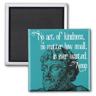KINDNESS - Inspirational Aesop Quote Magnet