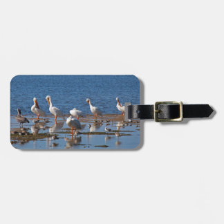 Kindred Souls Luggage Tag
