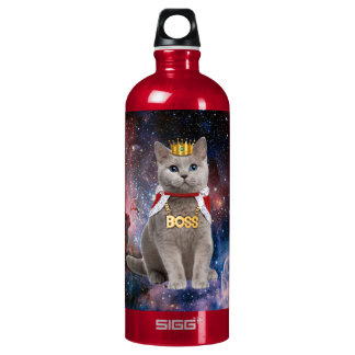 king cat in the space