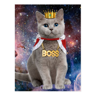 king cat in the space postcard