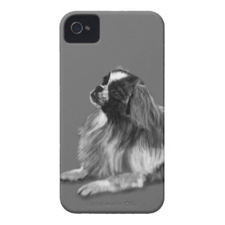 King Charles Case-Mate iPhone 4 Cases