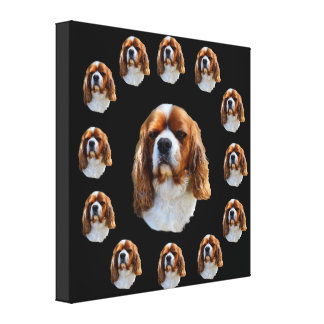 King Charles Cavalier Spaniel Dog Face, Canvas Print
