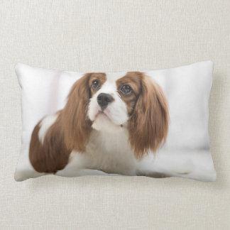 King Charles Cavalier Spaniel Lumbar Pillow