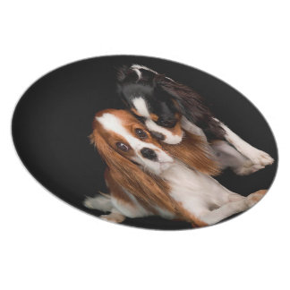 King Charles Cavalier Spaniel Plate