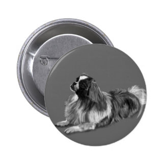 King Charles Spaniel 2 Inch Round Button