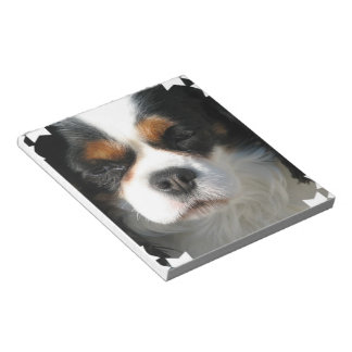 King Charles Spaniel Notepad