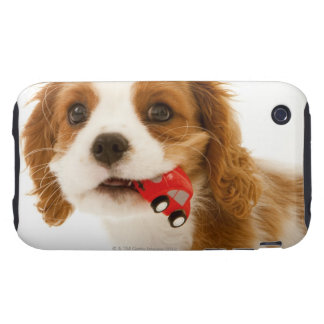 King Charles Spaniel with red car in her mouth. iPhone 3 Tough Cases