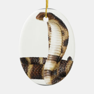 """""""King Cobra 2"""" Ceramic Oval Ornament"""
