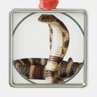 """""""King Cobra 2"""" Silver-Colored Square Ornament"""