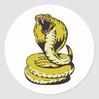 king cobra snake angry attacking classic round sticker