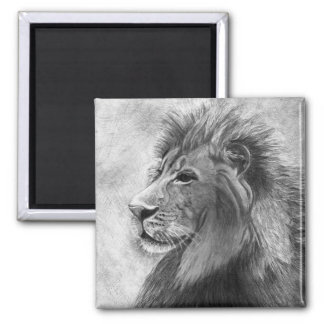 King of the Jungle, Hand drawn Lion in Graphite Square Magnet