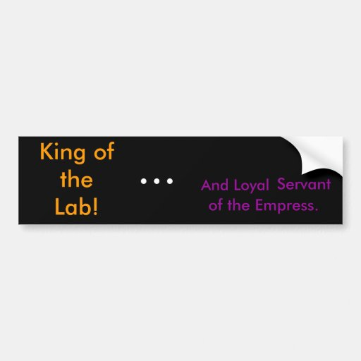 King of the Lab! Bumper Sticker