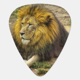 King of the Zoo Guitar Pick