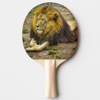 King of the Zoo Ping Pong Paddle