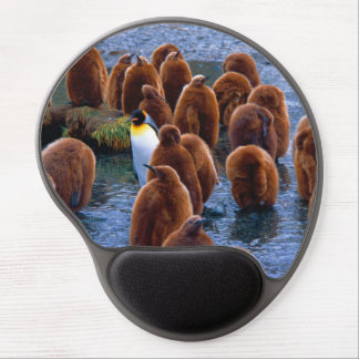 King Penguin and Chicks - mouse pad