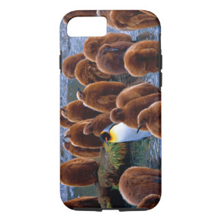 King Penguin Chicks iPhone 7 iPhone 8/7 Case