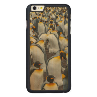 King penguin colony, Falklands Carved Maple iPhone 6 Plus Case