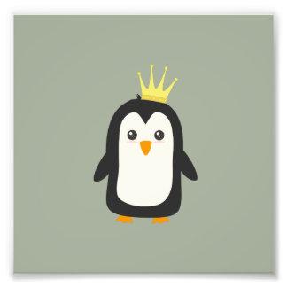 King Penguin Photograph