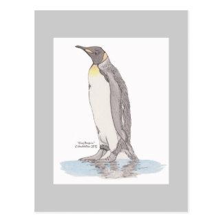 King Penguin Postcard