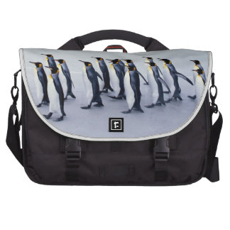 King penguins (Aptenodytes patagonicus) Commuter Bag