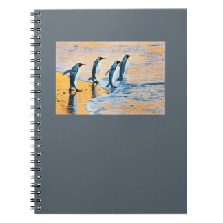 King Penguins at Sunrise notepad Spiral Notebook